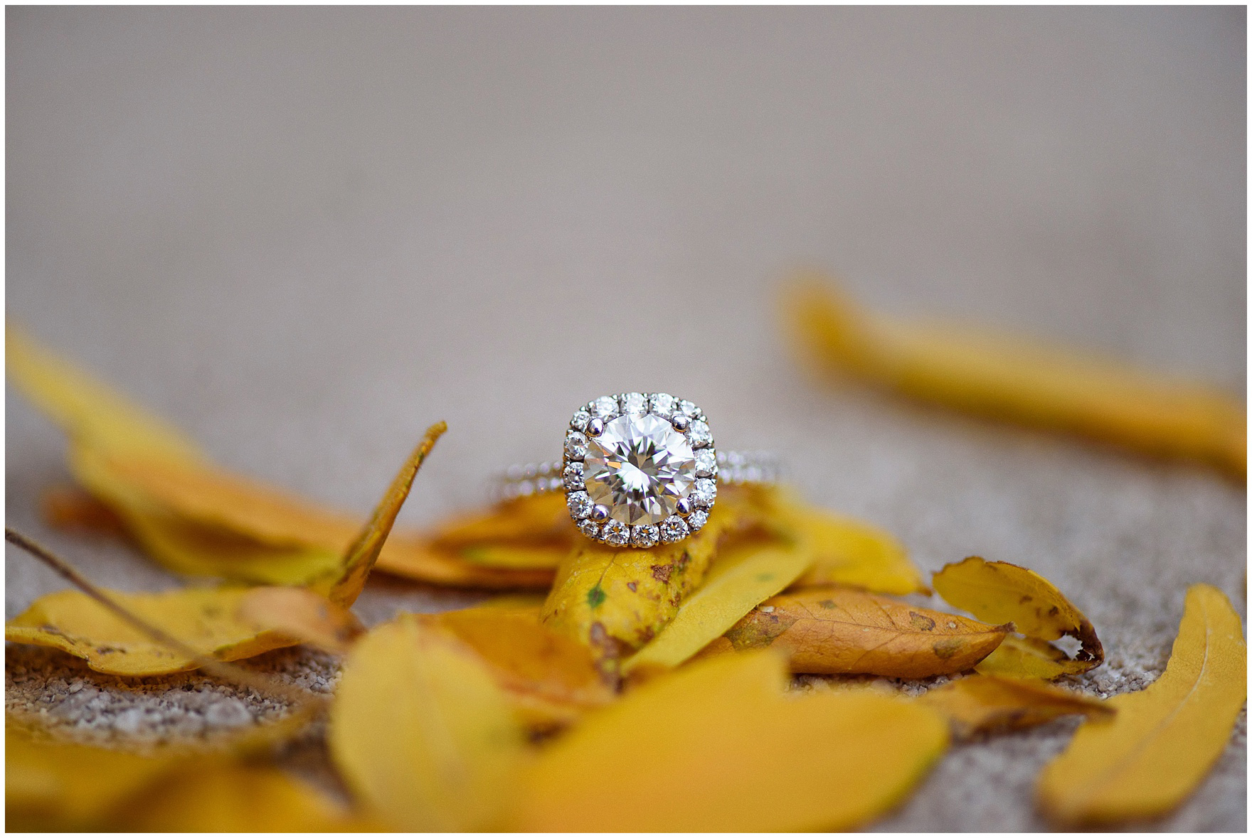 Close up photograph of a diamond engagement ring sitting on yellow fall leaves during a Chicago Windy City coffee shop engagement session.