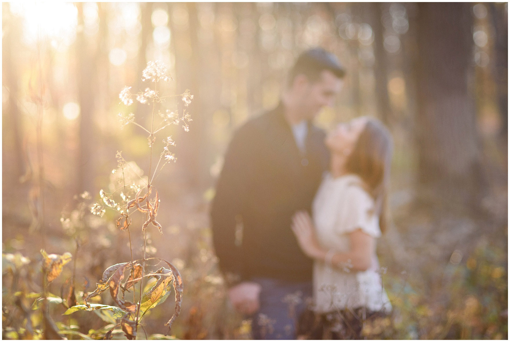A couple embraces among tall grasses and trees during a fall woods engagement session.