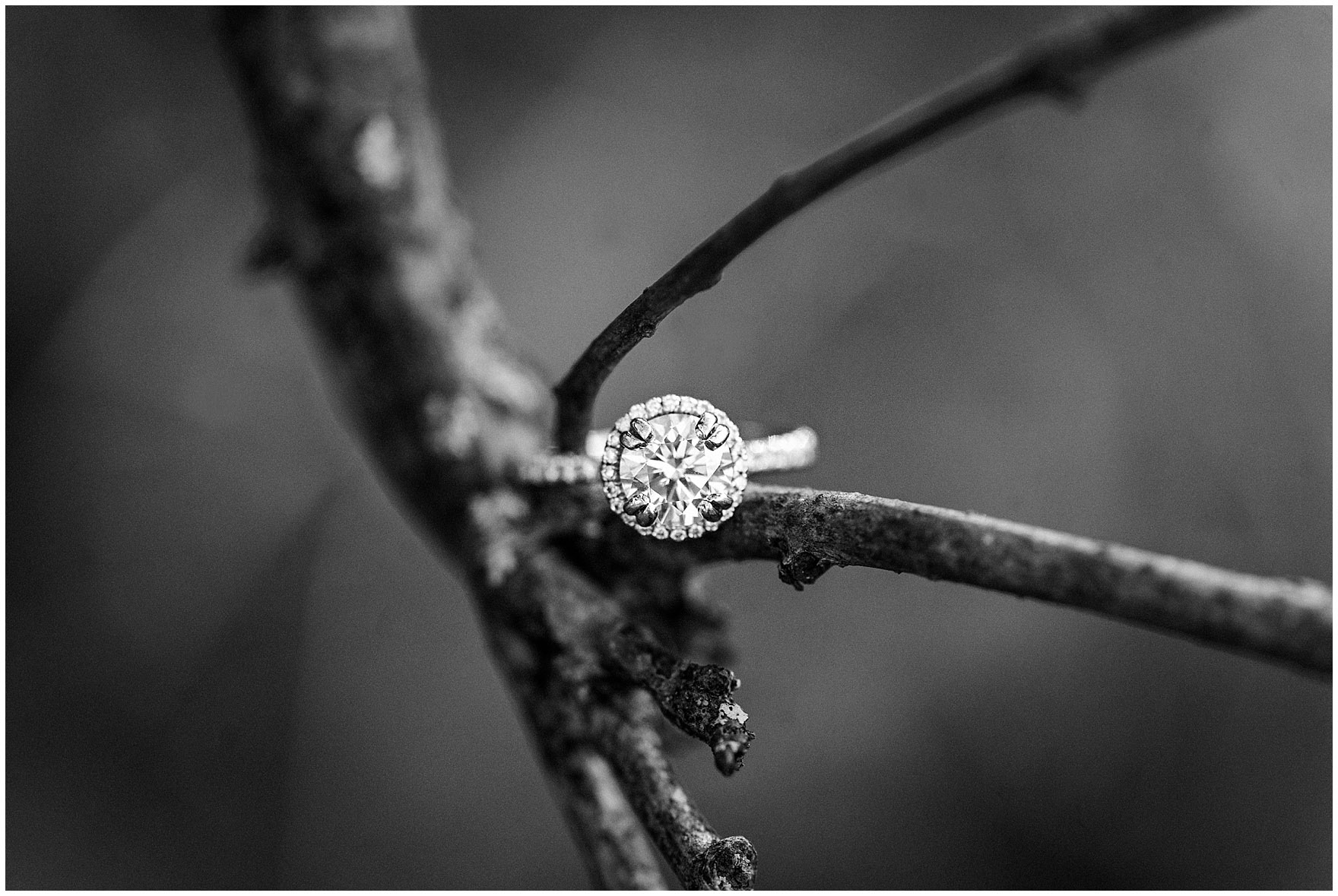 Black and white close up of a diamond engagement ring during a fall woods engagement session.