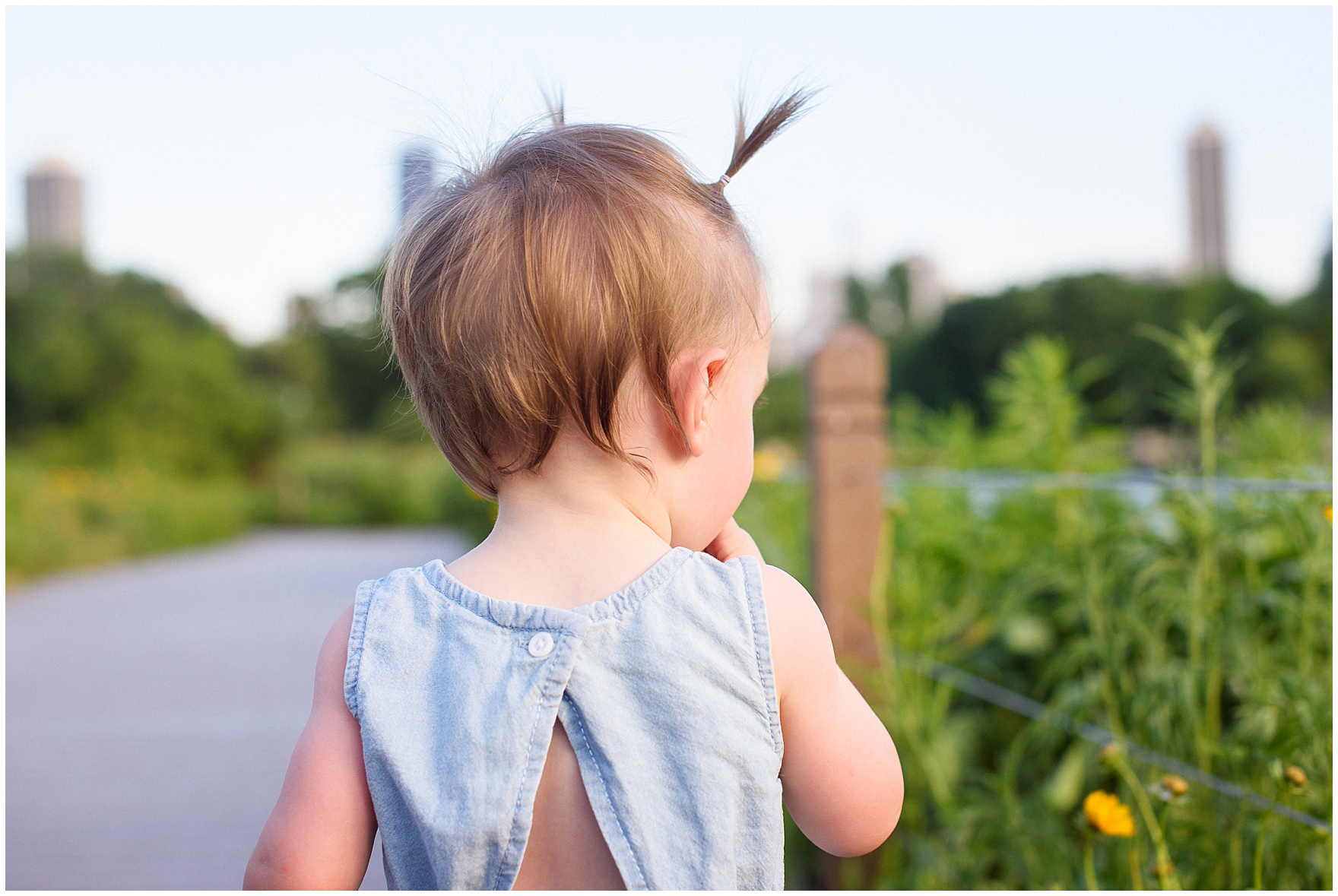 A little girl looks at the flowers along the Nature Boardwalk during a Chicago Lincoln Park family photography session.